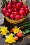 Oeufs de pâques - Roumanie Photo stock
