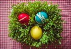 Oeufs de pâques sur l'herbe Photo libre de droits