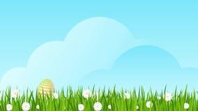 Oeufs de pâques sur l'herbe verte avec des marguerites banque de vidéos