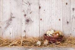 Oeufs de pâques sur le bois Photos libres de droits