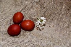 Oeufs de pâques sur un beau fond photographie stock libre de droits