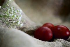 Oeufs de pâques sur un beau fond photographie stock