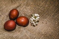 Oeufs de pâques sur un beau fond images stock