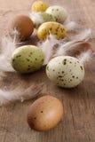 Oeufs de pâques tachetés sur la table en bois Image libre de droits