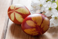 Oeufs de pâques teints avec des peaux d'oignon, avec un modèle des herbes fraîches Image libre de droits