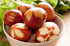 Oeufs de pâques teints avec des peaux d'oignon, avec un modèle des herbes fraîches Photographie stock