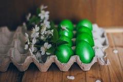Oeufs de pâques verts dans le récipient de papier sur le fond en bois avec une branche des fleurs de cerisier Photo libre de droits