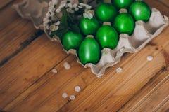 Oeufs de pâques verts dans le récipient de papier sur le fond en bois avec une branche des fleurs de cerisier Image stock