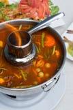 Oeufs de poisson de poisson-chat g?ant en soupe aigre ?pic?e image libre de droits