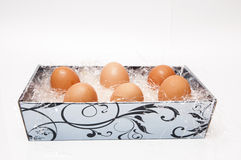 Oeufs de poule Photo stock