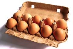 Oeufs de poulet Images stock