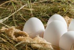 Oeufs de poulet dans la paille Fond rustique en bois Image libre de droits