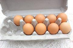 Oeufs de poulet dans le carton Images libres de droits