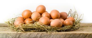 Oeufs de poulet dans le nid de foin. D'isolement. Aliment biologique images stock