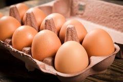Oeufs de poulet dans le plateau de carton Photographie stock libre de droits