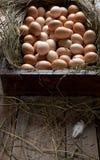 Oeufs de poulet dans un cadre en bois Photo stock