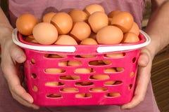 Oeufs de poulet dans un panier Photo stock