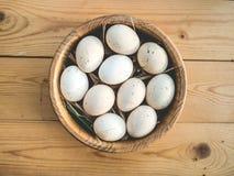 Oeufs de poulet dans une cuvette Photographie stock libre de droits