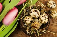 Oeufs de poulet et de caille avec des tulipes le fond a coloré le vecteur rouge de tulipe de format des oeufs de pâques eps8 Photos stock