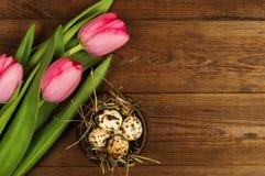 Oeufs de poulet et de caille avec des tulipes le fond a coloré le vecteur rouge de tulipe de format des oeufs de pâques eps8 Photographie stock