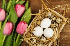 Oeufs de poulet et de caille avec des tulipes le fond a coloré le vecteur rouge de tulipe de format des oeufs de pâques eps8 Photos libres de droits