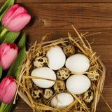 Oeufs de poulet et de caille avec des tulipes le fond a coloré le vecteur rouge de tulipe de format des oeufs de pâques eps8 Photo stock