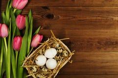 Oeufs de poulet et de caille avec des tulipes le fond a coloré le vecteur rouge de tulipe de format des oeufs de pâques eps8 Image libre de droits