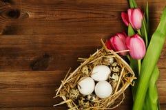 Oeufs de poulet et de caille avec des tulipes le fond a coloré le vecteur rouge de tulipe de format des oeufs de pâques eps8 Image stock