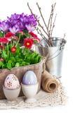 Oeufs de pâques avec des fleurs de ressort dans le panier Photos stock