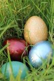 Oeufs de pâques colorés cachés dans les herbes denses Concept de vacances de ressort Photo stock