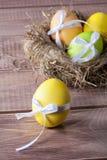 Oeufs de pâques colorés dans un nid Image libre de droits