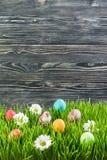 Oeufs de pâques dans l'herbe Photographie stock libre de droits