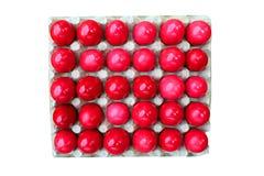 Oeufs de rouge de Pâques images stock