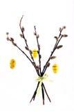 Oeufs de simbol de Pâques s'arrêtant sur le saule Image libre de droits
