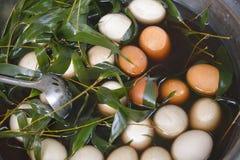 Oeufs de thé bouillis avec les feuilles en bambou Photographie stock
