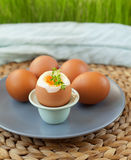 Oeufs durs Image stock