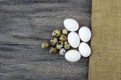 oeufs en forme de fleur de poulet et oeufs de caille Les oeufs blancs de poulet et les oeufs de caille se tiennent côte à côte su Photo stock