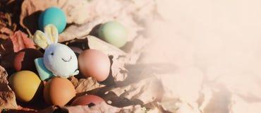 Oeufs et lapin de pâques colorés sur les feuilles sèches Photo stock