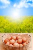 Oeufs et lever de soleil Photo stock
