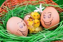 Oeufs et poulets de sourire dans l'emboîtement Photographie stock