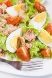 Oeufs et salade de thon Photographie stock