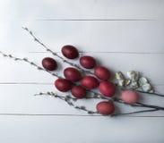 Oeufs et saule de pâques sur un fond en bois blanc Photos libres de droits