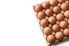 Oeufs frais de 123/5000 poulet sur un fond blanc Image stock