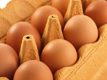 Oeufs libres d'intervalle Image stock