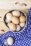 Oeufs organiques des poulets gratuits de gamme Photos libres de droits