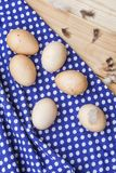 Oeufs organiques des poulets gratuits de gamme Images libres de droits