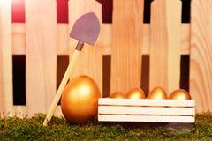 Oeufs peints dans la couleur d'or sur la mousse avec la pelle Image libre de droits