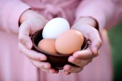 Oeufs pour Pâques avec un brin des fleurs de ressort dans les mains d'une fille photo stock