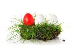 Oeufs rouges et blancs dans un morceau de gazon, isolat de décoration de Pâques Photos libres de droits