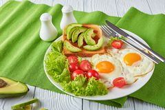 Oeufs, salade fraîche, pain grillé avec la diffusion de levure photo stock